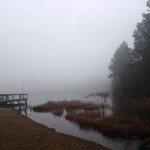 Lake Juniper Fog